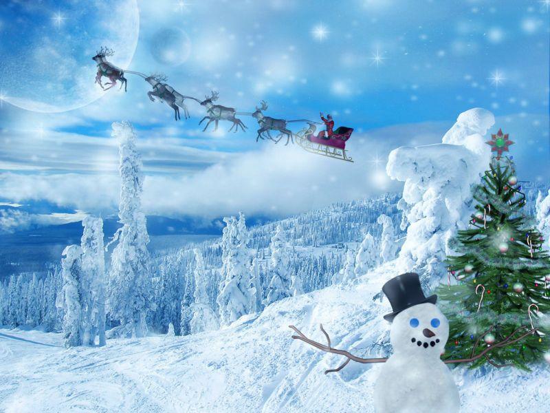 青いクリスマス