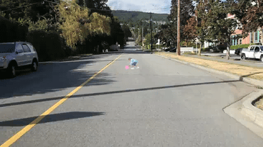 YouTube - You're Probably Not Expecting a Child to Run Out On the Road