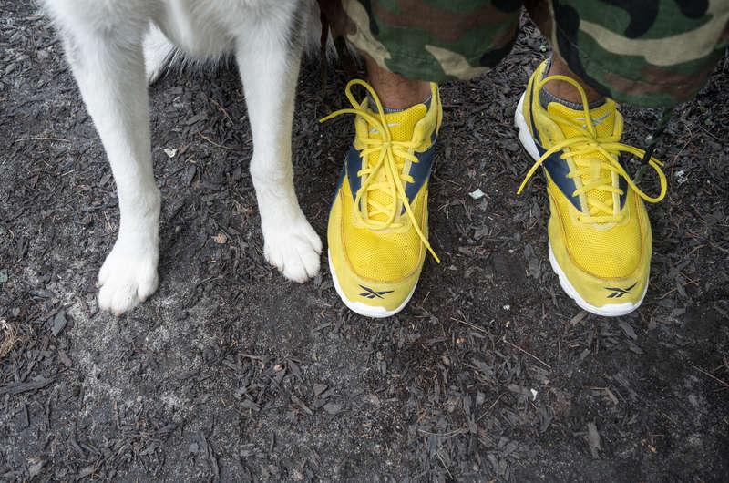 犬と飼い主の足だけに視点を置いた構図がユニークな写真プロジェクト