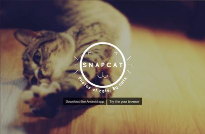 ネコの自分撮り写真を撮るためのユニークなアプリ『Snapcat』