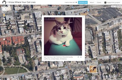 世界中の猫の所在地を明らかにするマップサイト『I Know Where Your Cat Lives』